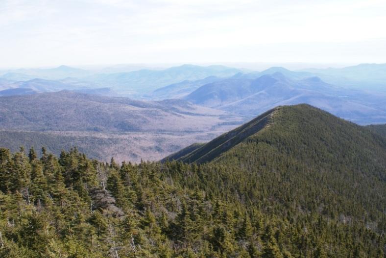 Carrigain Summit - Signal Ridge