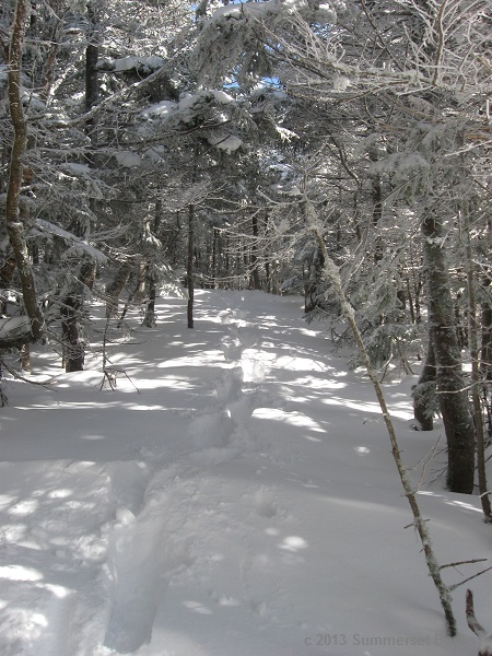 Headed toward Wildcat D from the top of the ski area, with tracks in the fresh powder.