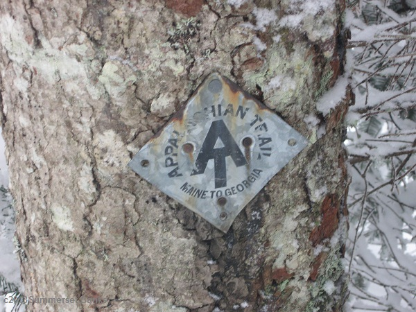 An old AT marker on a tree near the junction of the Garfield Ridge and Gale River Trails.  We didn't see this one until we were headed southbound on our descent.  There is another one just past the junction, but is in worse shape.