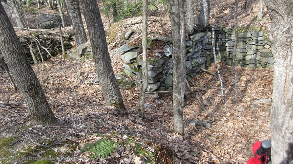 Old foundation/cellar hole along the Brook Trail.