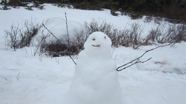 The snow was just sticky enough for us to make a snowman on top of Whiteface.  He probably won't last long, but was fun to make.