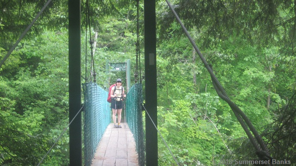 The suspension bridge over Clarendon Gorge.