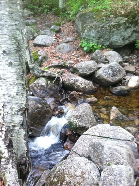 Pretty stream and easy to rock hop.