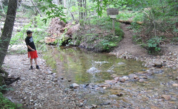 Cameron skipping stones at the Avalanche Brook crossing before getting back on the Livermore Trail.