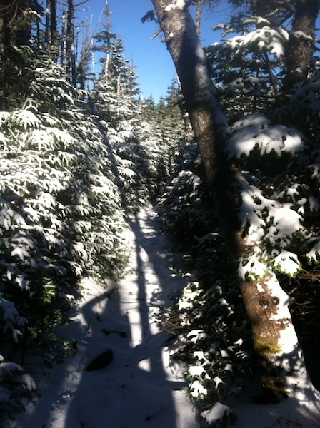 The first bit of winter wonderland along the trail.