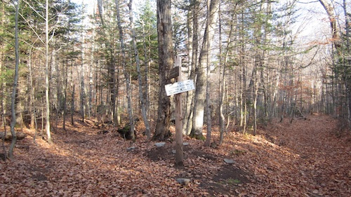 New junction of Signal Ridge and Carrigain Notch Trails.
