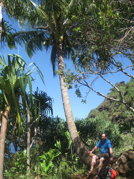 Ethan resting in the shade under a coconut palm on the return trip.