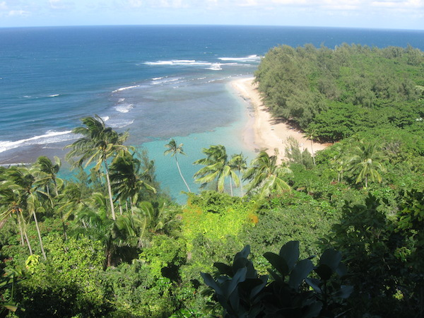 View from one of the lookouts on the trail back down to Ke'e and Tunnels Beach.  The trail head is down there somewhere in the trees.