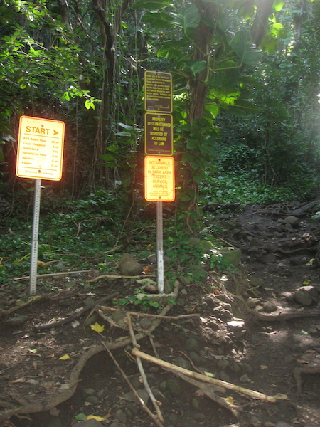 The start of the trail, just to the right of the signs.