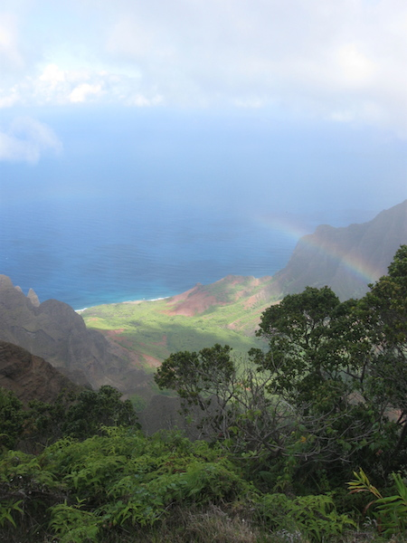 View down to the Kalalau Valley and Beach from the out look at the top of Waimea Canyon.  It is only two miles from here to the beach, but due to the extremely steep cliffs, it is not accessible by foot from this point.