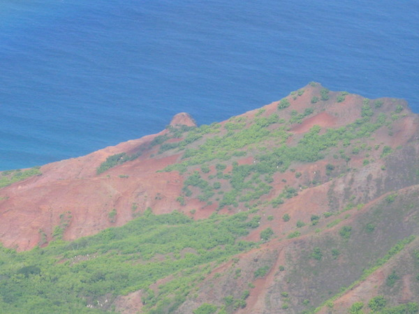 Red Hill, so named because of the red clay that makes up the hill.  From here it is less than 1 mile to the beach.