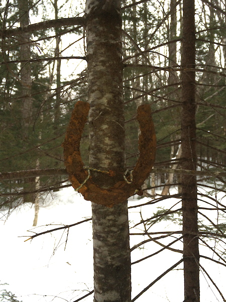 Horseshoe on a tree at the junction of the Lincoln Brook Trail and the Black Pond Bushwhack.