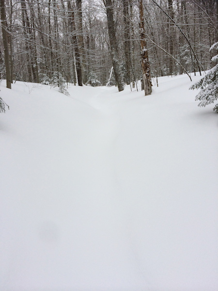 Here's the trail.  This was completely broken out 24 hours prior.  Now it is hard to see the snowshoe trough.
