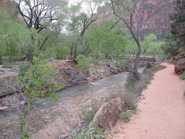 Looking back to the bridge across the Virgin River at the trail head.