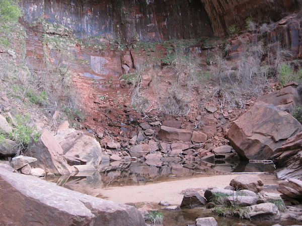 The end of the trail at the Upper Emerald Pool, close to the canyon walls.