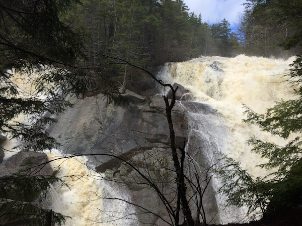 Both falls at Harvard Falls.  From what I understand, if the water volume isn't high enough, the waterfall on the left may not be running.
