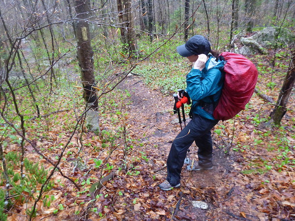 I'm somewhere along the Indian Head Trail, in full rain gear.    The trail is blazed in yellow, but could use some fresh paint on the fading blazes.   You can also see the water in the trail behind me.