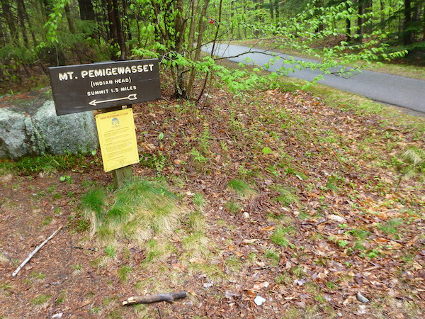 At the recreation path through Fraconia Notch, where the Mt. Pemigewasset Trail heads west toward the summit.  From here it is only a few minute's walk back the Flume Visitor Center parking.
