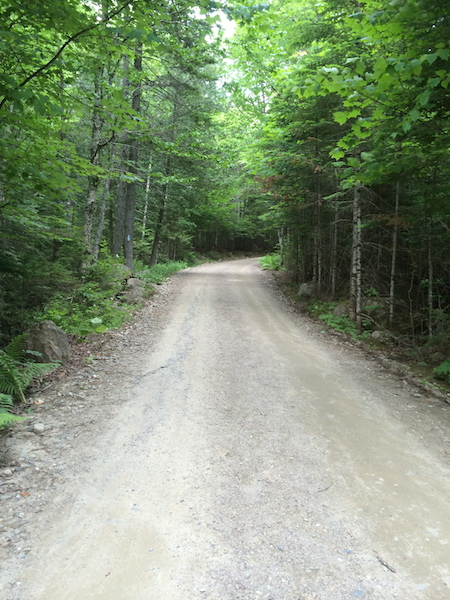 The park tote road in Baxter State Park.  Yes, you can put two vehicles on this road!