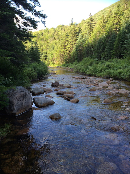Whitewall Brook, taken during the crossing on Zeacliff Trail.