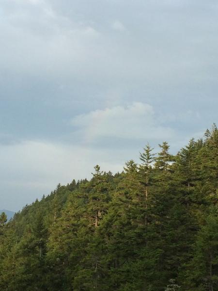 Faint, but still a rainbow as seen from Gentian Pond Shelter.