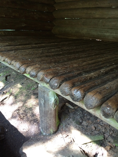 Old style, baseball bat floor in the Poplar Ridge Shelter.   We only stopped in for a snack.