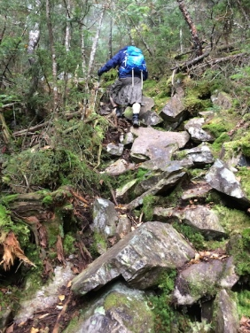 In the steep rough section on the Desolation Trail.  A fine example of the rough New England trails we all love.