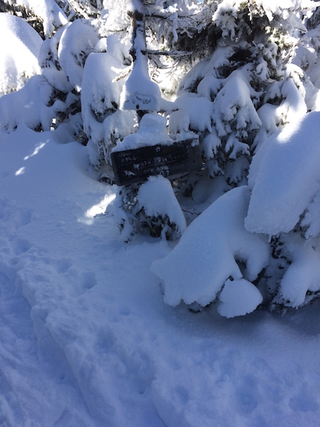 Sign at North Twin and the spur trail to the outlook.  The snow is already getting deep!