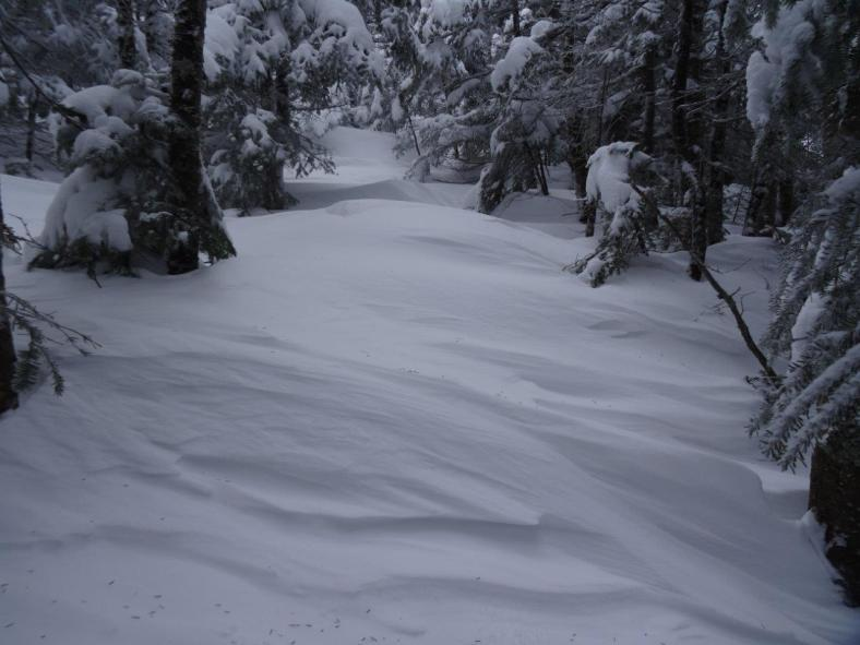Unbroken, drifted trail on the Osceola ridge.