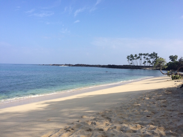 The other end of Mahai'ula Beach.  To get to the next beach, we headed toward the stand of palm trees near the point.