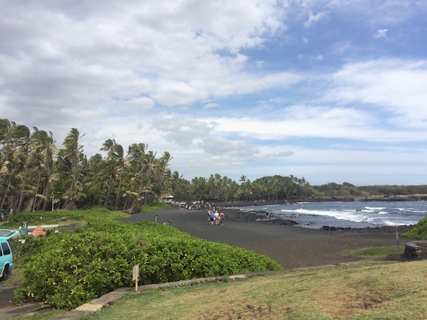 More of the black sand beach, back by swaying palm trees.