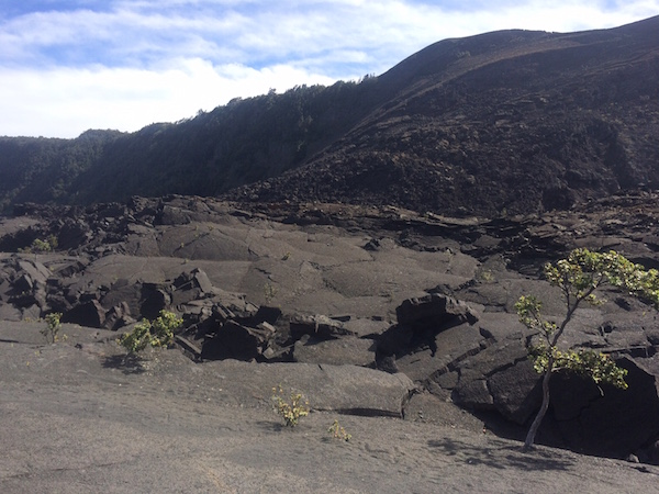 Part of the landscape of the crater, created when the lava lake cooled and hardened on the surface, but was still liquid and rolling underneath.