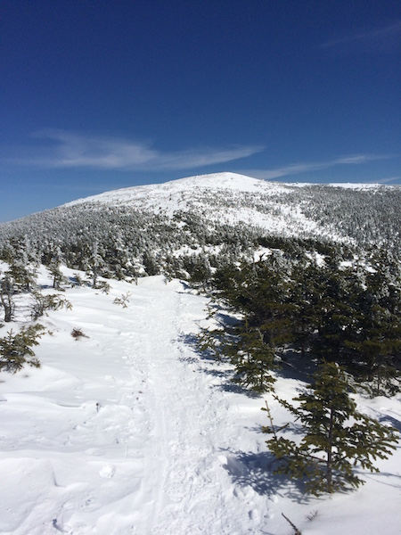 Looking ahead to the summit of Moosilauke from the Carriage Road.