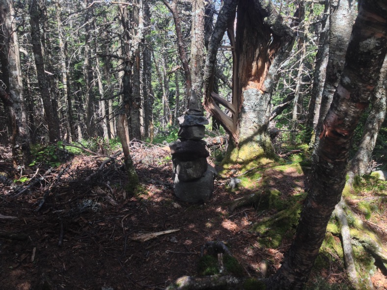 The June 14, 2015 version of the Owl's Head summit cairn.