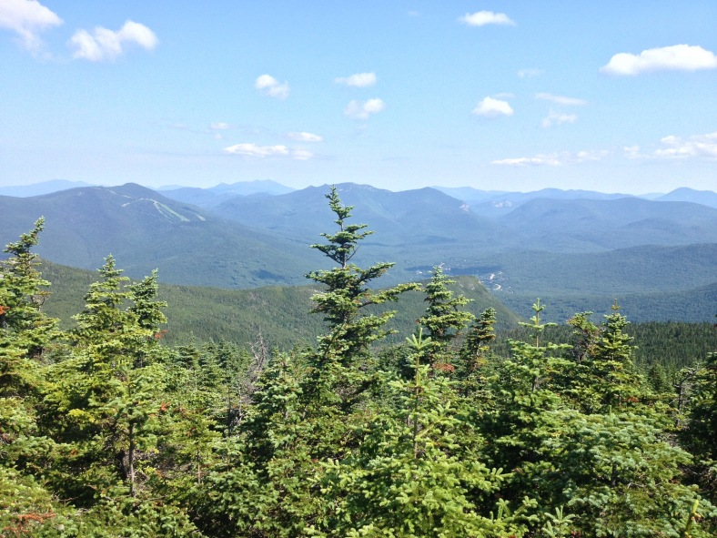 The view from Sandwich Dome summit looking towards Mt. Tecumseh. Not a panoramic view, and a bit obstructed by trees. Still a personal favorite spot.