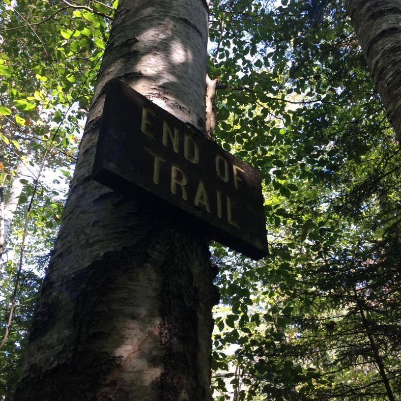 The end of the Franconia Falls Trail, or the beginning depending on which direction you are traveling.
