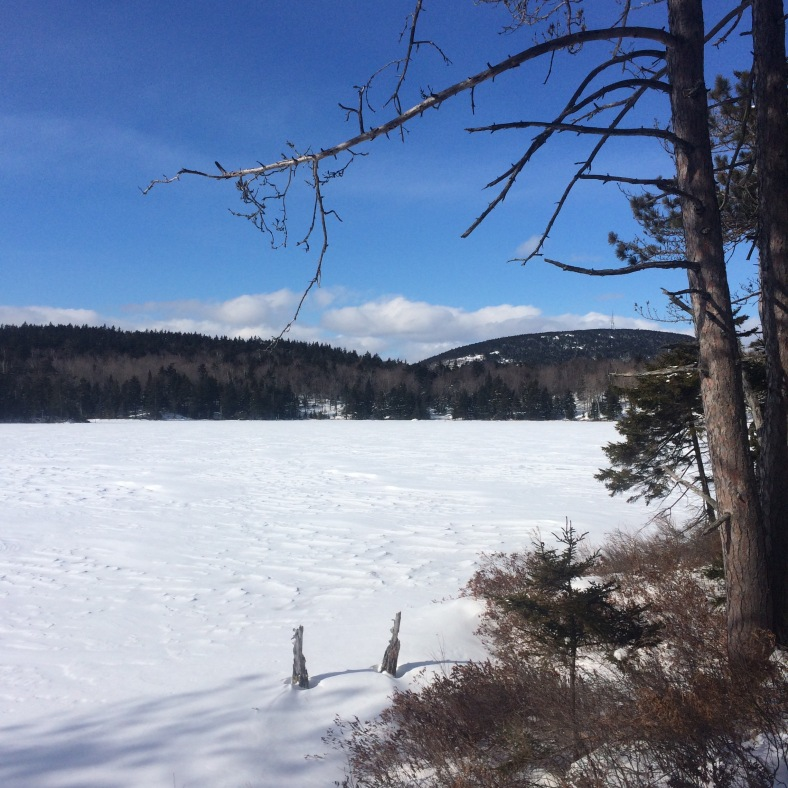 Cold, but bluebird day at Round Pond, looking toward Mt. Belknap.