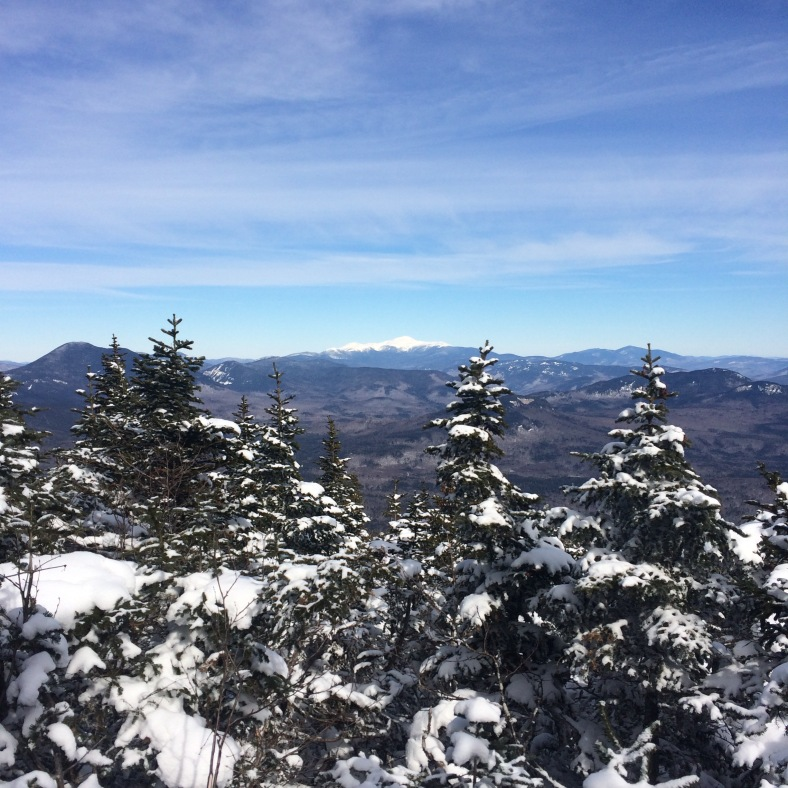 A peek out to Mt. Washington from one of the outlooks along the upper portion of the Pine Bend Trail.
