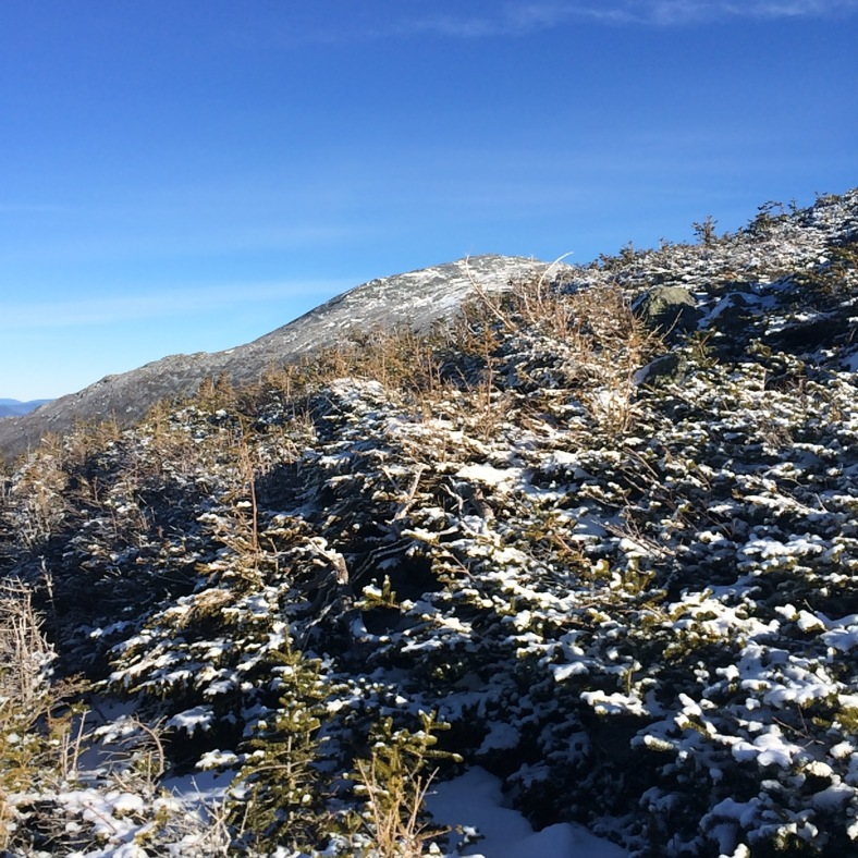 Sunshine and blue skies over Jefferson, seen over the ridge right at the scrub line.