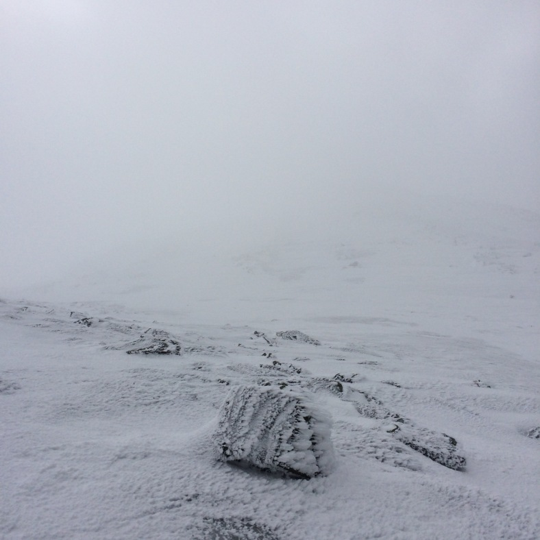 Monroe is out there, somewhere. This picture was taken from the corner of Lake of the Clouds Hut. Needless to say, visibility was poor and we stayed close together on the ascent and descent.