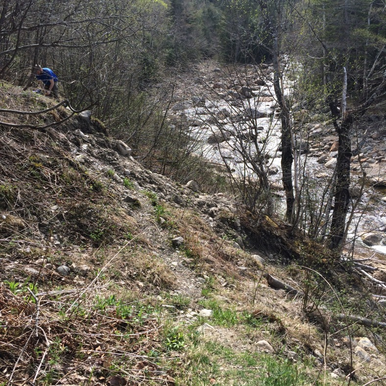 One washed out section of the Wild River Trail. JohninNH is on the other side of the worst of the eroded side hill.