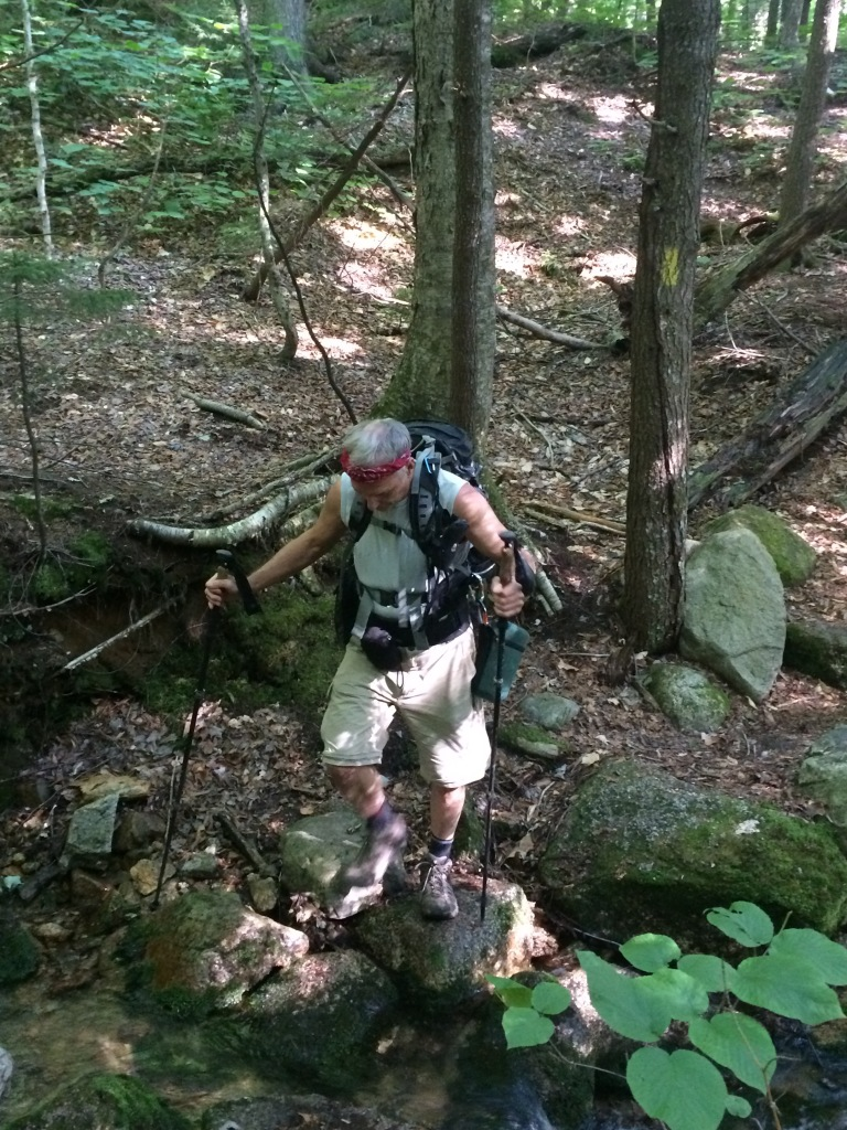 Schorman in action, at the second crossing of the brook on Pine Bend Brook Trail.
